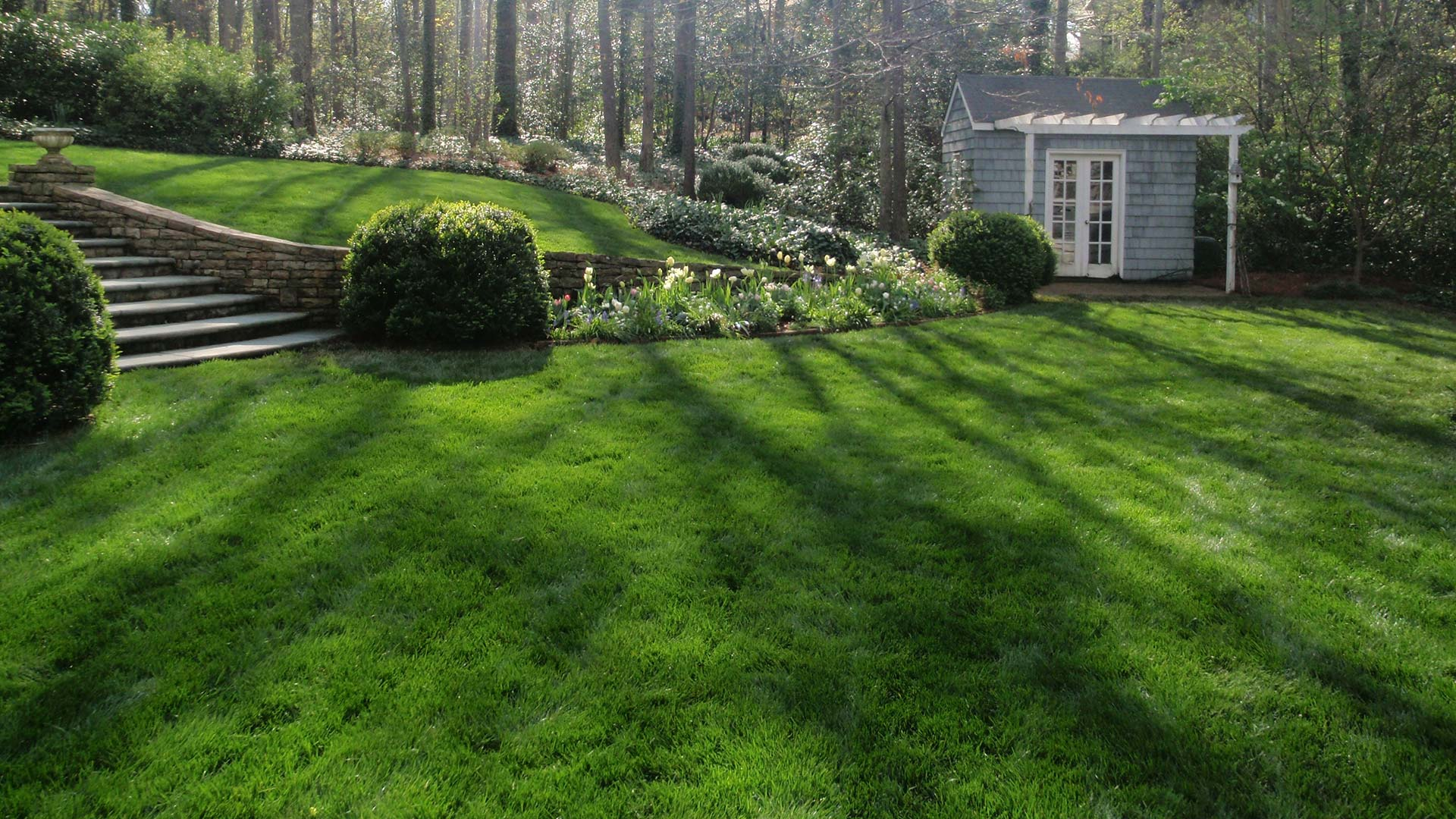 Residential backyard with recently mowed lawn and maintained landscaping in Buckhead, GA.