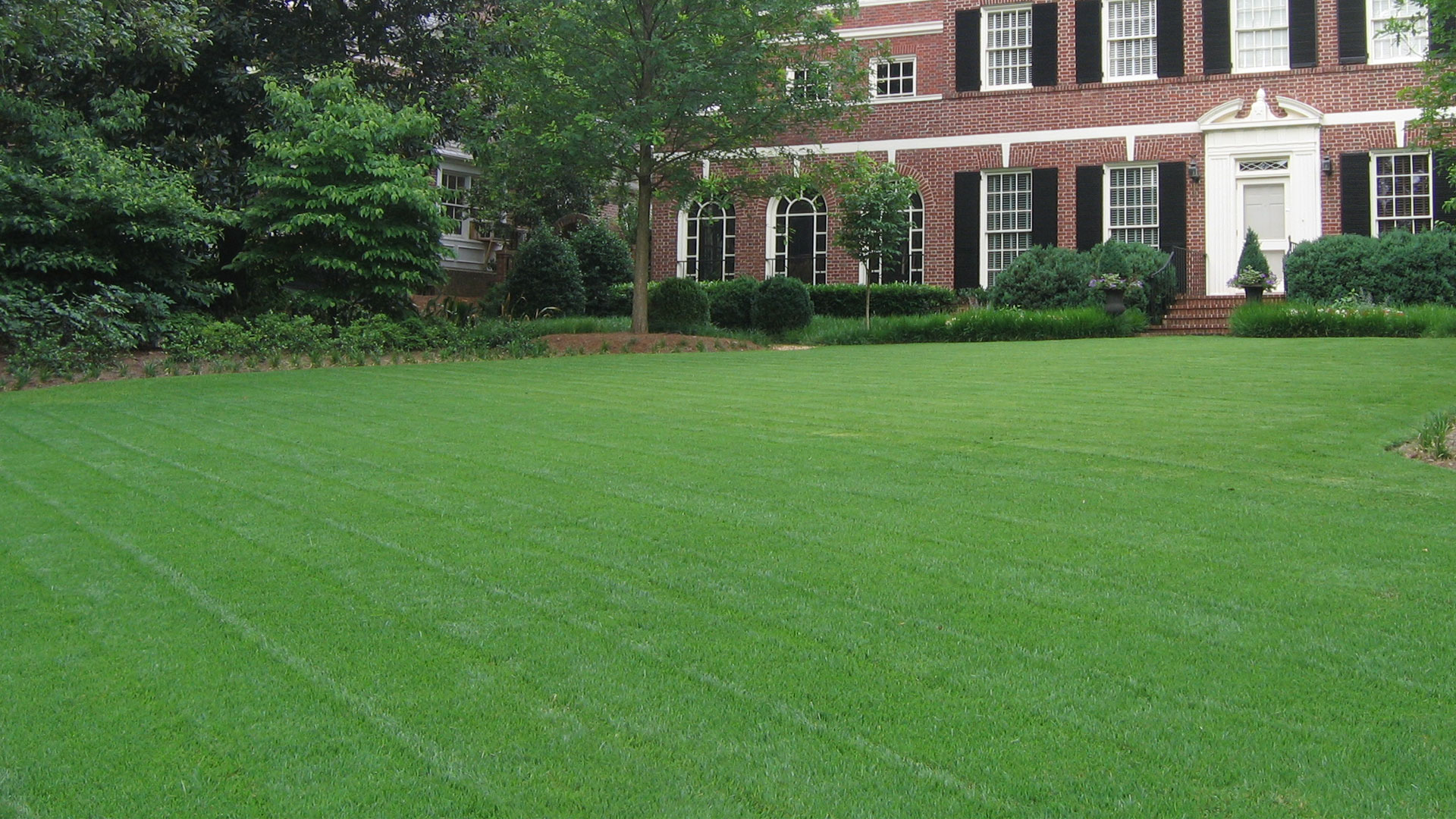 Front lawn of a home in Atlanta that is maintained by our team.