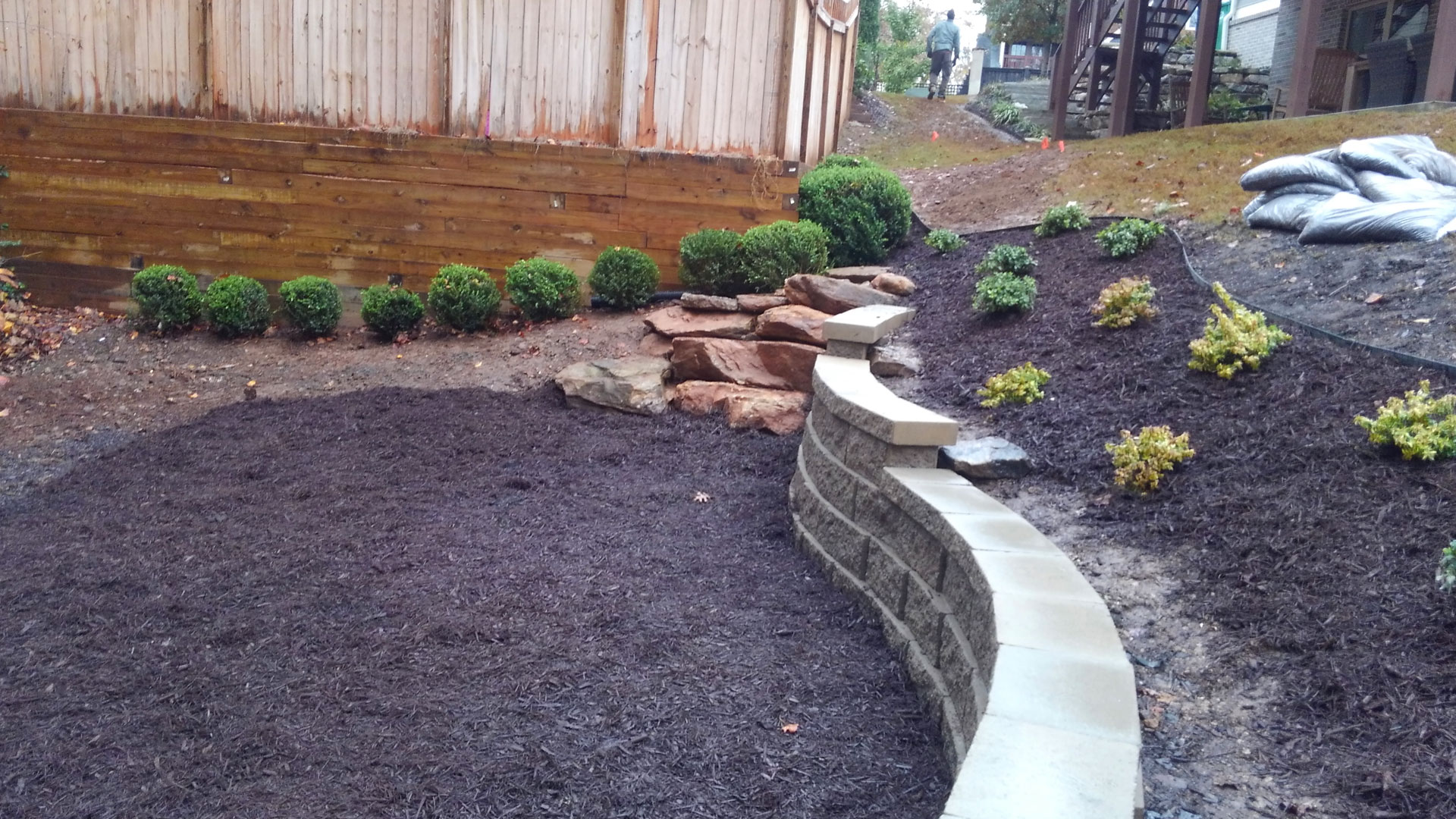New softscape installed in front of a home in Buckhead, GA.