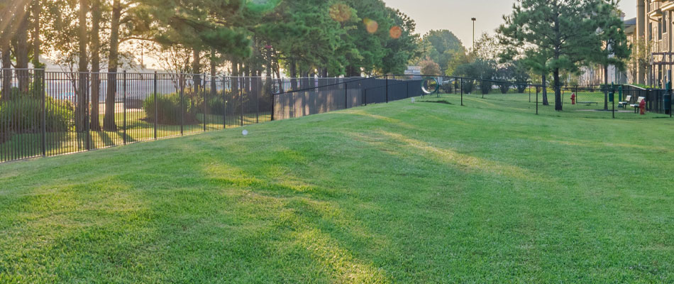 A commercial complex that we mow on a weekly basis in Buckhead, GA.