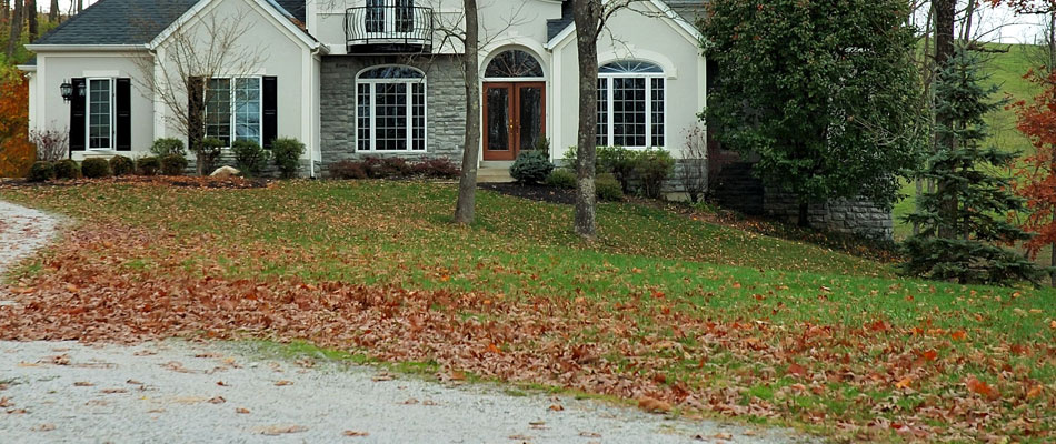 Fall leaves on the front lawn before our cleanup service.
