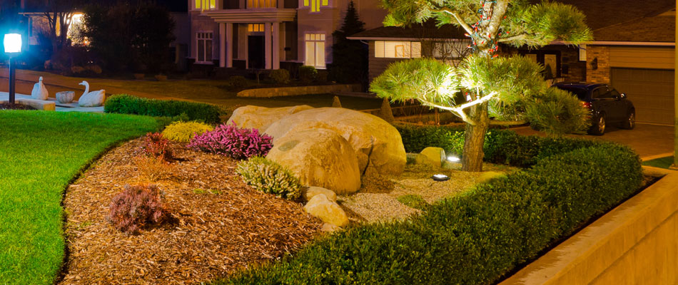 New landscape lighting installed by our team of professionals.