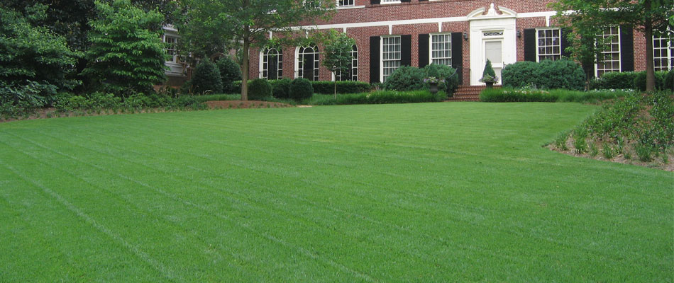 Large green mowed, fertilized and maintained by our company.