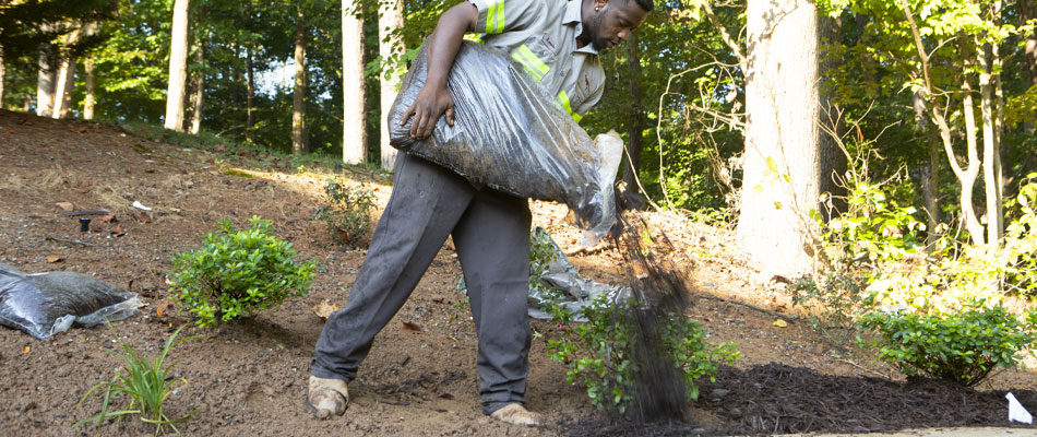 One of our employees spreading new black mulch after we have completed a landscaping project.