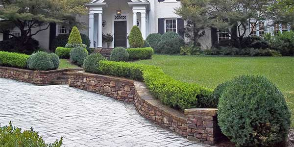 Fully maintained home lawn in Atlanta.