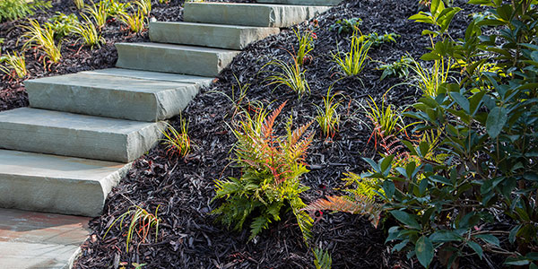 Mulch installation and landscaping in Atlanta.